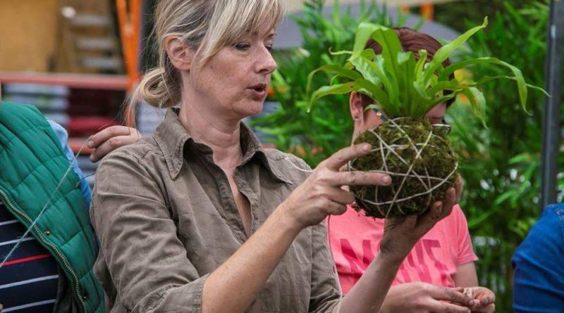 Upoznajte kokedamu, japansku tehniku oblikovanja biljaka u kuglama od mahovine. Kokedama predstavlja stil uzgoja koji potječe iz tehnike Nearai, vrlo popularnog bonsai stila iz 17. stoljeća u Japanu. Prezentacija same biljke bez odgovarajuće posude stvara jedinstven i neobičan prizor koji će oduševiti svakog ljubitelja biljaka. Vaša instruktorica će biti Kornelija Benyovsky Šoštarić