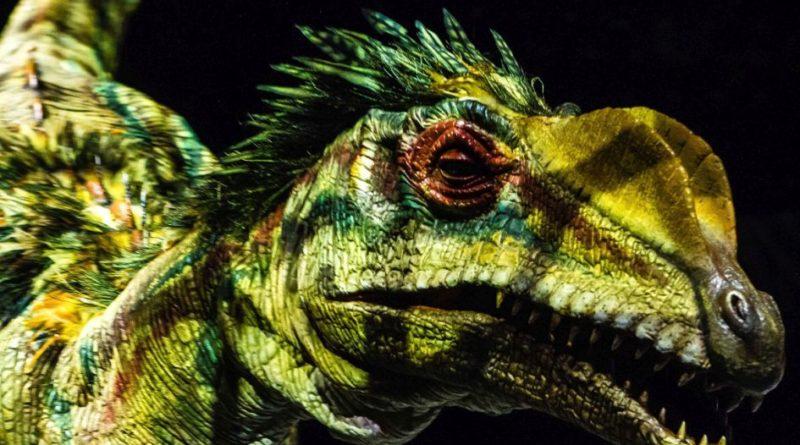 dinosaur, prethistorija