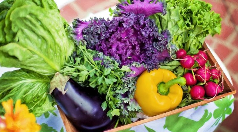 vegetables, povrće, vrtlarenje, poljoprivreda, uzgpj hrane