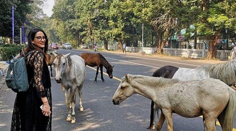 Indija: Kolkata, grad radosti (3)